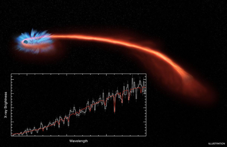 Астрономы наблюдают черную дыру, разрывающую звезду в клочья